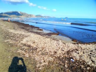 Laganas strandja vihar után. Itt látható a rengeteg fű.