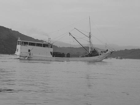 Halászhajók