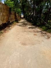 Tipikus utcakép