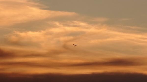 Naplementében szálló repülő