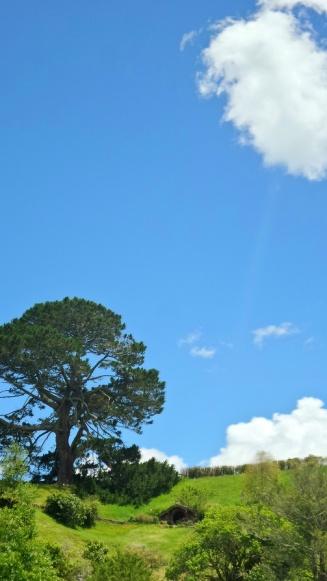 A nagy fa